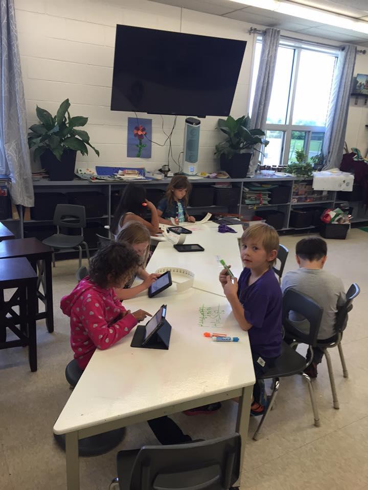 Media Gallery: Queen Elizabeth II Public School